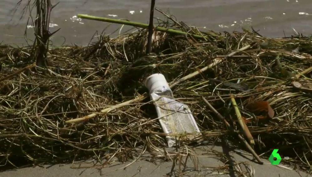 Más de 10.000 voluntarios limpian de basura varios puntos de Epaña