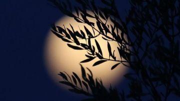 El verano brindará un eclipse total de Luna visible desde España