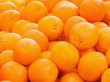 Imagen de archivo de naranjas