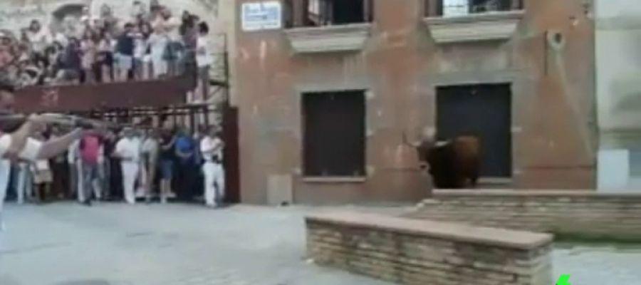 Matan a tiros y en público al 'toro de Coria' saltándose la ordenanza municipal que lo prohíbe