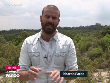 Ricardo Pardo