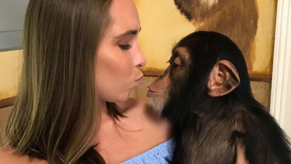 Chimpancé que reconoce a sus cuidadores
