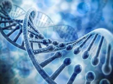 Nuevo paso hacia la creacion de una celula artificial