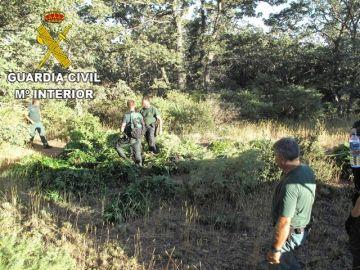 En la imagen la Guardia Civil en las proximidades de un cortijo de Busquístar
