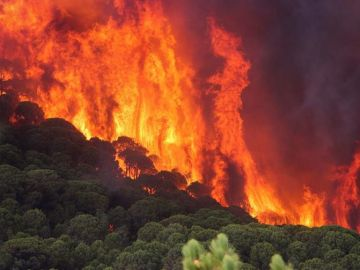Incendio en Moguer (Huelva)