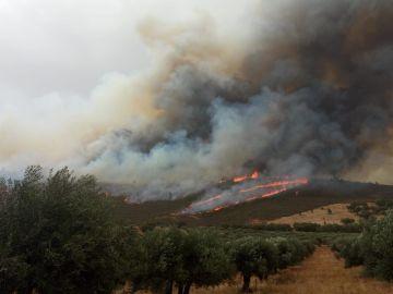 Incendio en San Vicente de Alcántara, en Badajoz