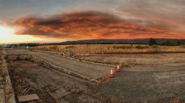 Llamas en la zona de Mendocino en Willows, California, EEUU.