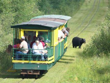 Tahquamenon Falls Train