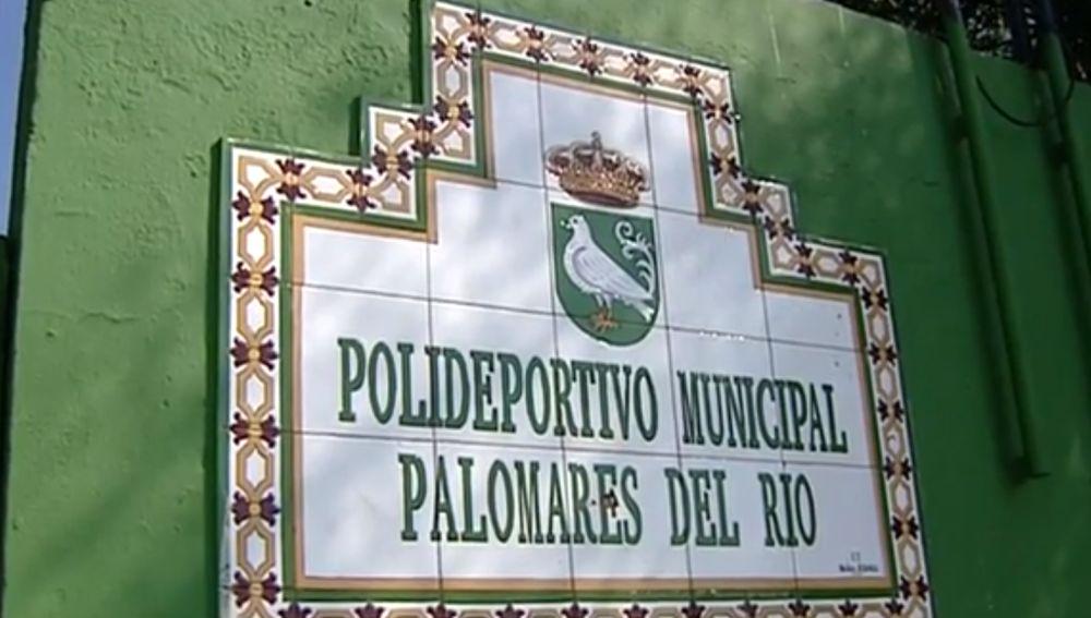 Polideportivo municipal Palomares del Río