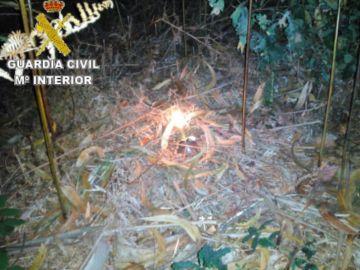 Artefacto hallado por la Guardia Civil