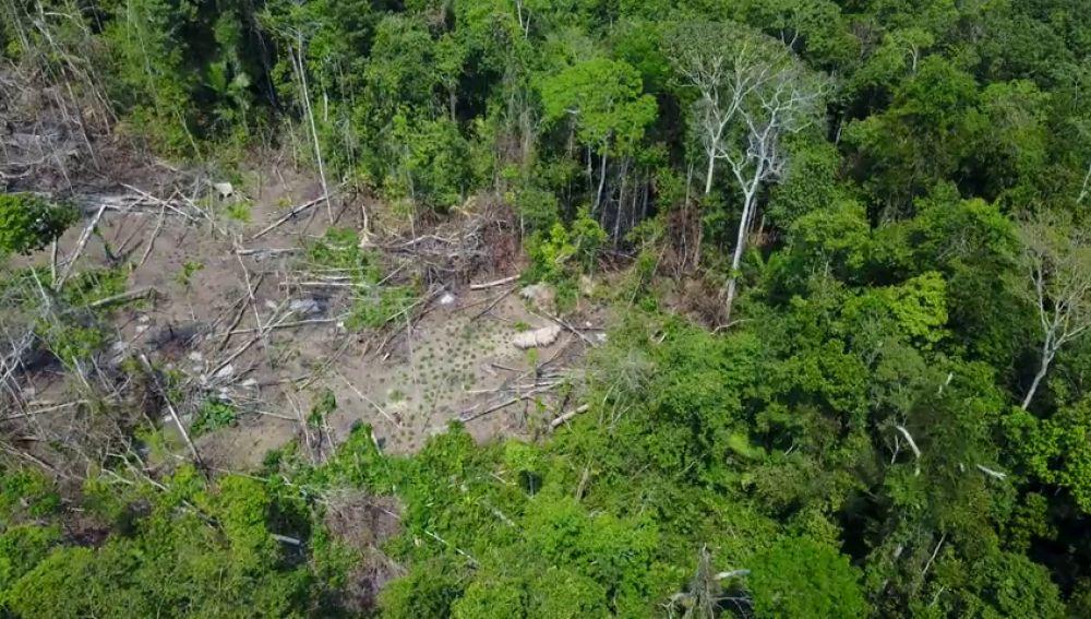 Localizan una nueva tribu amazónica gracias a las imágenes de un dron