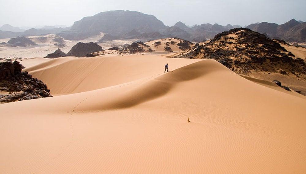 El Sáhara podría cambiar mucho su aspecto con placas solares y vegetación