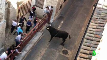 Toro de la Vega de Tordesillas 2018