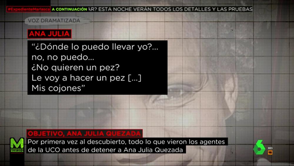 """Las grabaciones a Ana Julia Quezada cuando trasladaba a Gabriel: """"¿No quieren un pez? Les voy a hacer un pez... mis cojones"""""""