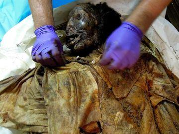 Momia del siglo XIX encontrada en 2011 en Nueva York