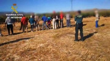 La Guardia Civil ha desmantelado una trama de explotación laboral en la Rioja Baja