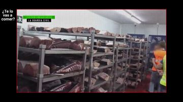 ¿Te lo vas a comer?, testigo del registro de las naves de uno de los mayores productores de atún rojo a nivel mundial