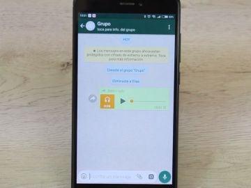 Audio en Whatsapp