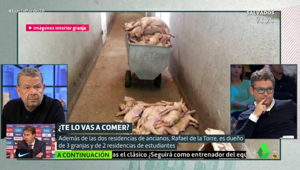 Cerdos muertos de Rafael de la Torre