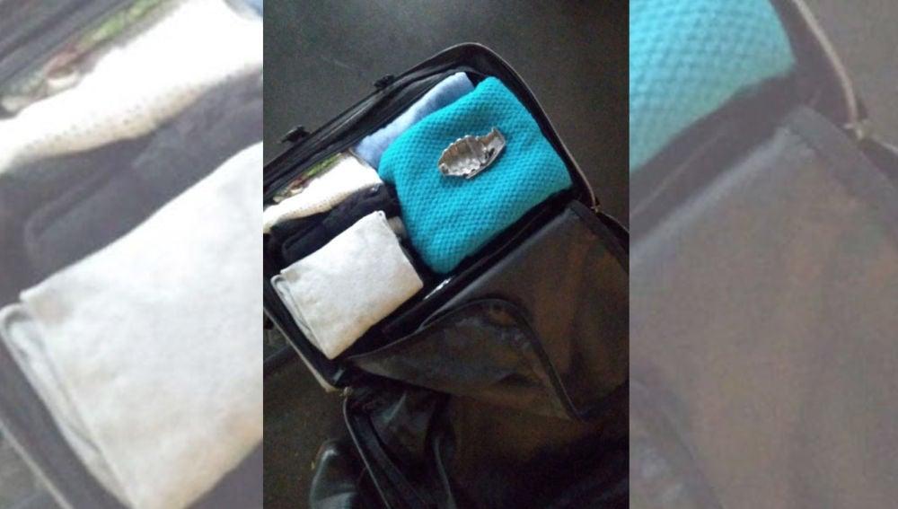 Imagen de la maleta que provocó el aviso de bomba en Sants