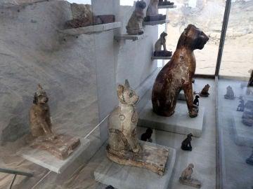 Unas de las momias de gatos halladas en Egipto