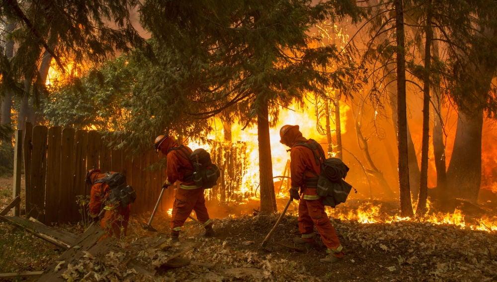Un grupo de bomberos fue registrado este viernes al combatir un incendio en el condado de Butte (California, EE. UU.).