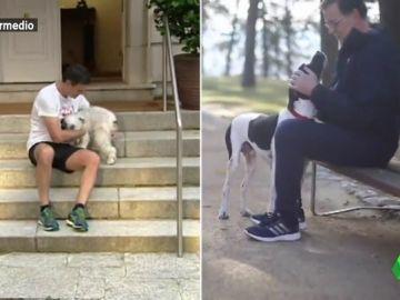 """Dani Mateo repasa las similitudes entre Rajoy y Sánchez: """"Tratan a sus mascotas con la misma destreza que el encantador de perros"""""""