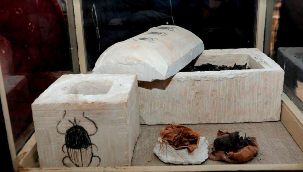 Una momia de escarabajo, tras ser hallado por una misión arqueológica egipcia