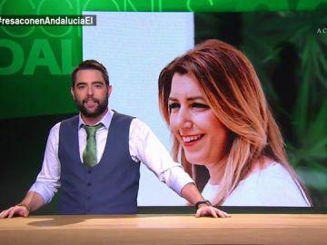 """Dani Mateo defiende el """"optimismo"""" de Susana Díaz: """"Menos leer la Constitución y más leer a Paulo Coelho"""""""