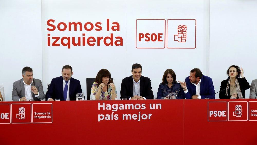El líder del PSOE, Pedro Sánchez, durante una ejecutiva del partido