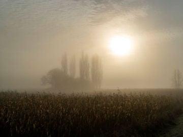 Un manto de niebla cubre Inglaterra (05-12-2018)