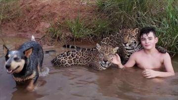 Lo que se esconde detrás de la viral fotografía de un niño jugando con jaguares en Brasil