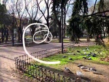 Cómo realizar vídeo de realidad aumentada