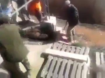 Un grupo de cazadores graba cómo deja en libertad a un zorro para acribillarlo a tiros mientras intenta huír
