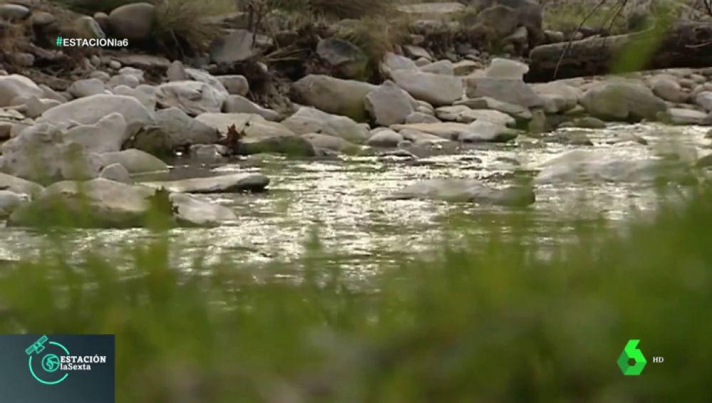 Imagen de un río