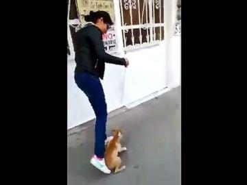 Una joven maltrata a un perro en Chalco, México