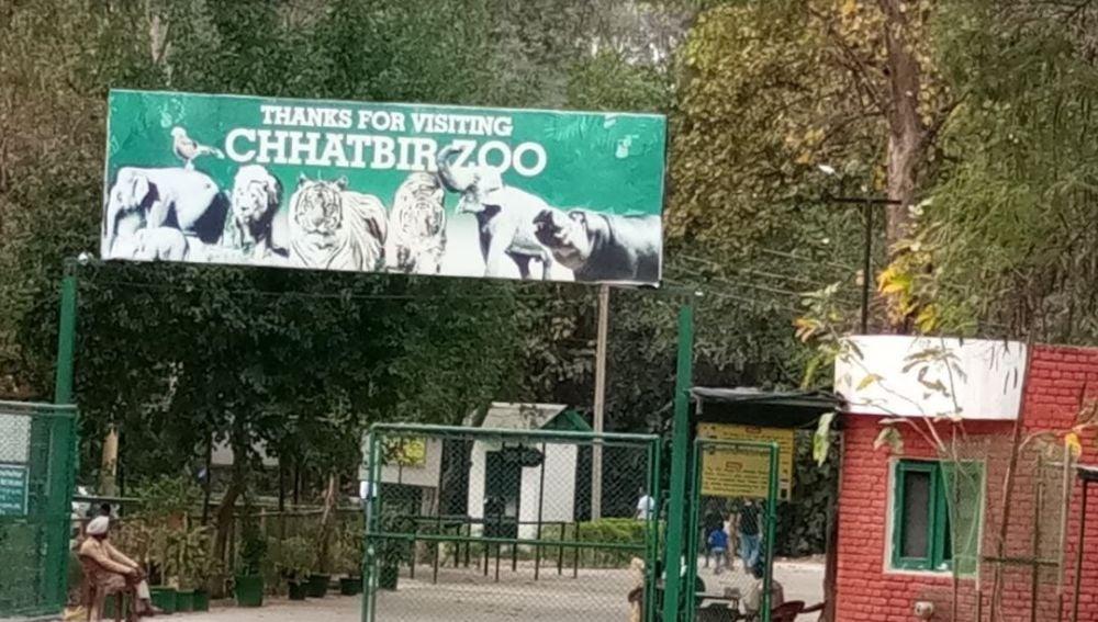 MC Zoological Park