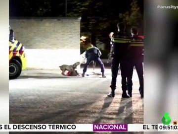 Así tranquiliza la Policía a un perro que intenta proteger a su dueña herida