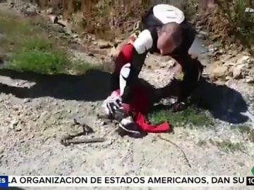 Un grupo de moteros libera a un zorro que se encontraba atrapado en una trampa ilegal