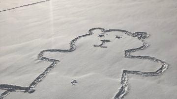 El enorme oso pintado en la nieve