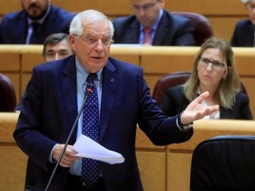 El ministro de Asuntos Exteriores, Josep Borrell, interviene durante la sesión de control al Gobierno en el Pleno del Senado