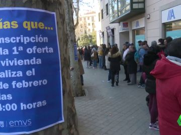 Cuando la vivienda digna se convierte en un problema: centenares de personas hacen cola para optar al alquiler público