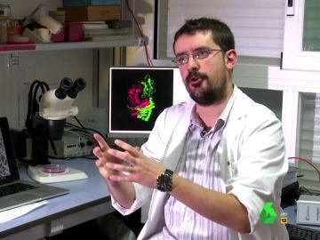 David Bernardo, Biólogo