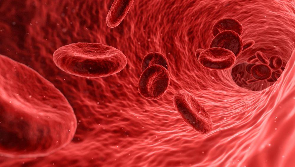 De la sangre gruesa enfermedad