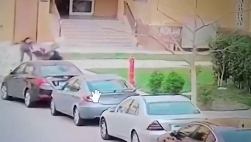 El impactante momento en el que una mujer salva a un niño del ataque de dos perros peligrosos