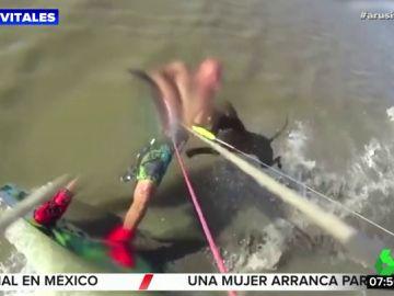 El impactante ataque de un perro a un joven mientras surfeaba cerca de la costa