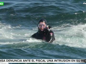 El buzo al que una ballena escupió vivo tras engullirlo