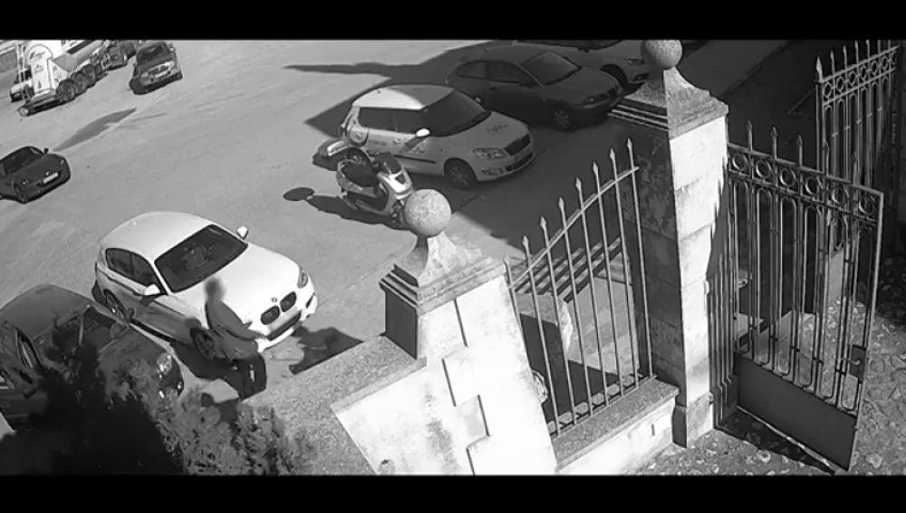 Graban a un hombre mientras abandona a su perra y sale huyendo en Palma de Mallorca