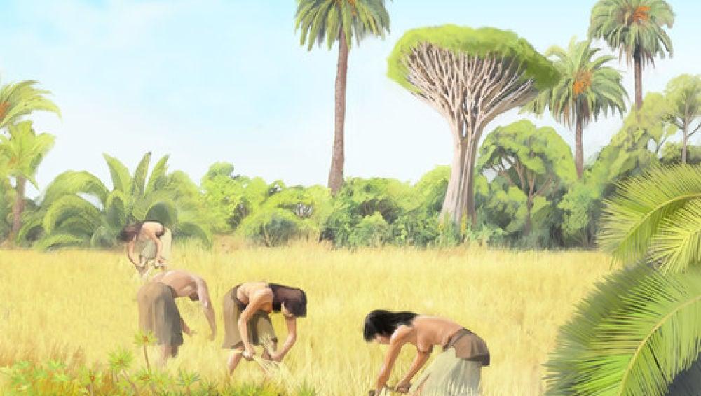 El ADN antiguo confirma el origen de los primeros colonizadores de Canarias