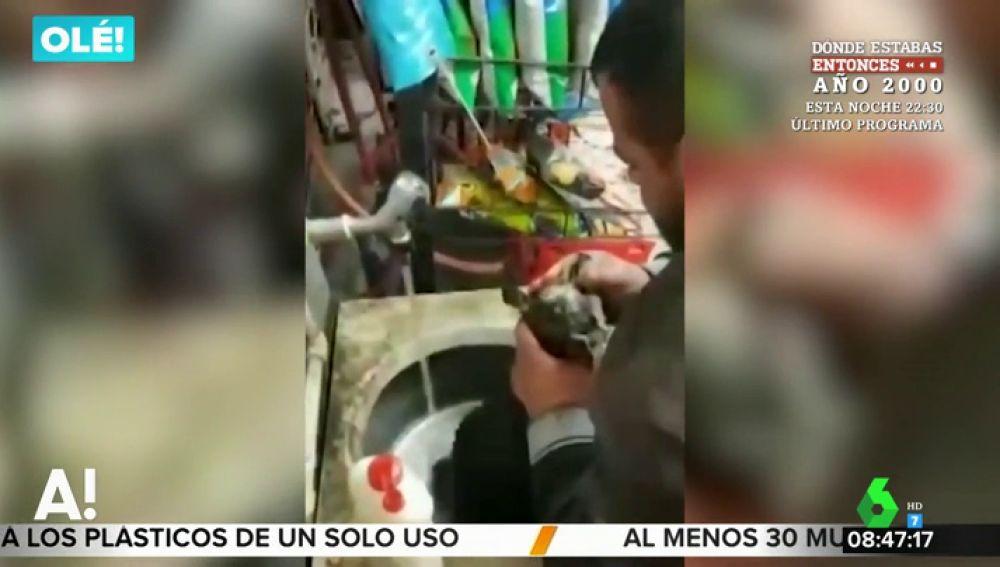 Un hombre salva a un perro callejero de morir ahogado haciéndole el boca a boca